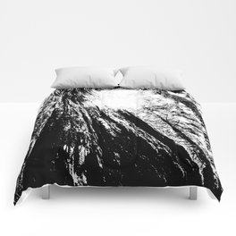 look up Comforters
