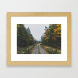 Looking for Moose Framed Art Print