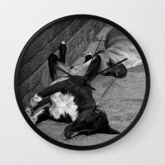 Greek Dogs Wall Clock