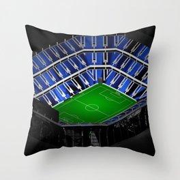The Floridian Throw Pillow