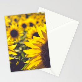 Summer Sunflower Love Stationery Cards