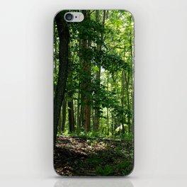 Pine tree woods iPhone Skin