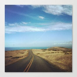 Tomales Point Canvas Print