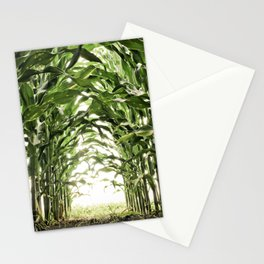 Midwest Corn Stationery Cards