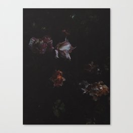 Cold Roses (II) Canvas Print