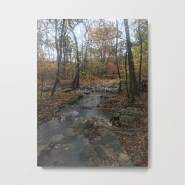 Quiet Autumn Creek Metal Print