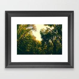 Sweet Surroundings  Framed Art Print