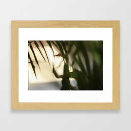 Dancing people, dance, shadows, hands and plants, blurred photography, dancer, forest, yoga Framed Art Print
