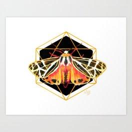 Mystic Moth 1 - Night Flyer Art Print