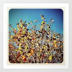 Autumn Colors - Instagram Art Print