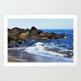 Plum Island Art Print