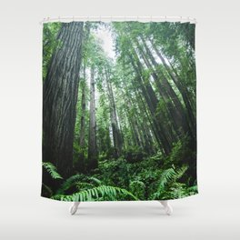 Redwood National Park- Pacific Northwest Nature Photography Shower Curtain