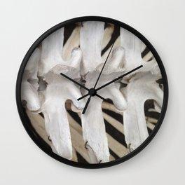 Dinosaur Ribs Wall Clock