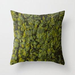 Nature's Textures Throw Pillow