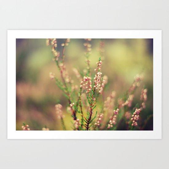 PINK AUTUMN FLOWER #1 Art Print