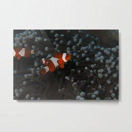 Badass Baby Clownfish Metal Print