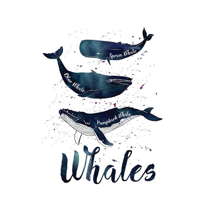 Watercolor Whales print Duvet Cover