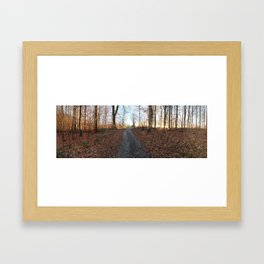 Forest in the Fall Framed Art Print