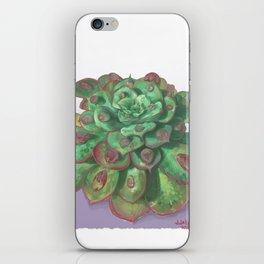 Raindrop - Succulent iPhone Skin