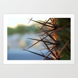 The Thorns In Life Art Print