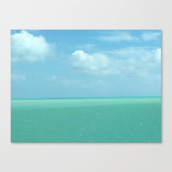 The Beauty of Florida Canvas Print
