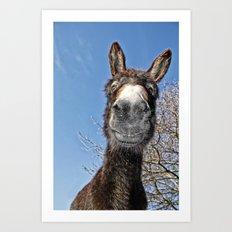 lucky Donkey Art Print