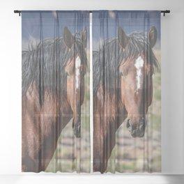 Wild_Horse 0174 - Nevada Sheer Curtain