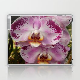 Pink Orchid Blossom from Mexico Laptop & iPad Skin