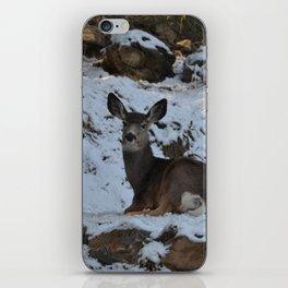 East Oregon Mule Deer iPhone Skin
