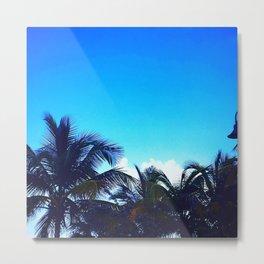 Vieques Palm Trees Metal Print