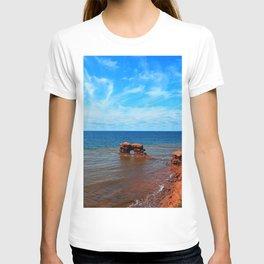 Sandstone holy rock T-shirt