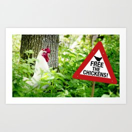 Free the Chickens Art Print