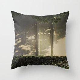 Light & Shadows #7 - 2014 Throw Pillow