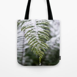 Fern Forest Winter Pacific Northwest Snow II - Nature Photography Tote Bag