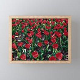 Tulips Framed Mini Art Print