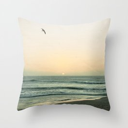 Lonely Flight Throw Pillow