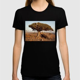 Socotra — dreams of the Lost Paradise T-shirt