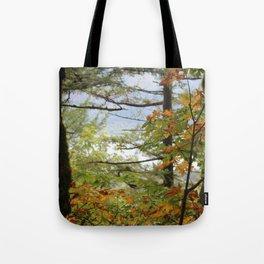 Columbia Rover Gorge Washington Trees in Autumn Tote Bag