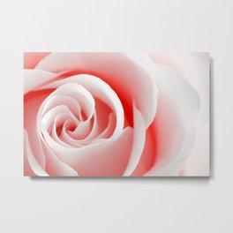 Red Rose Macro - High Key Metal Print