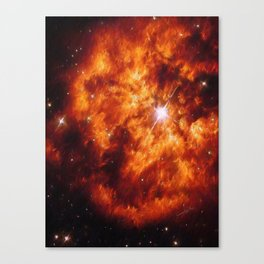 Cosmic Couple Canvas Print