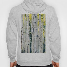 Aspen Forest Tree Bark Hoody
