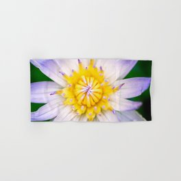 Flower photography by Hoover Tung Hand & Bath Towel
