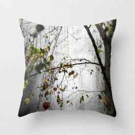 Silver Birch 3 Throw Pillow