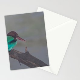 White-throated kingfisher. Stationery Cards