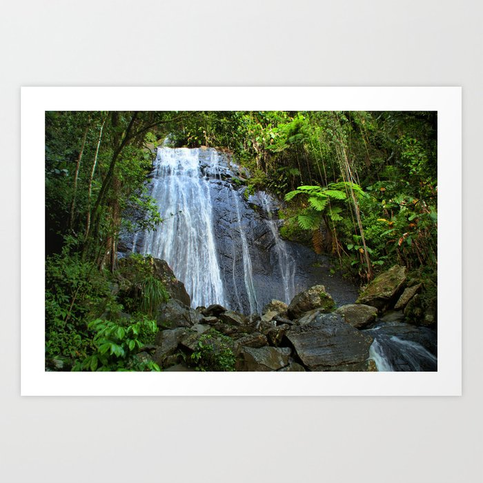 Yunque Waterfall Art Print