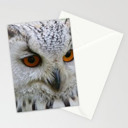 Owl | Chouette Stationery Cards
