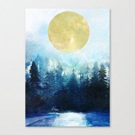 Winter Night 3 Canvas Print