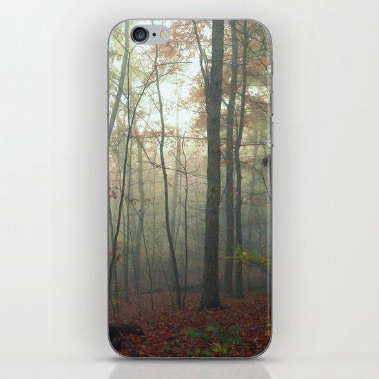 Wandering in a Fog iPhone & iPod Skin