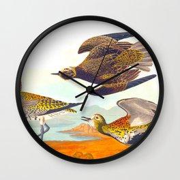 Golden Plover Bird Wall Clock