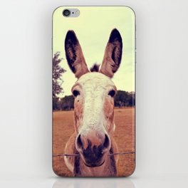 a curious donkey. iPhone Skin